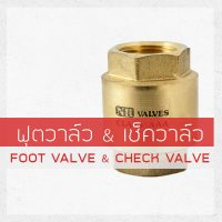 FOOT VALVE & CHECK VALVE